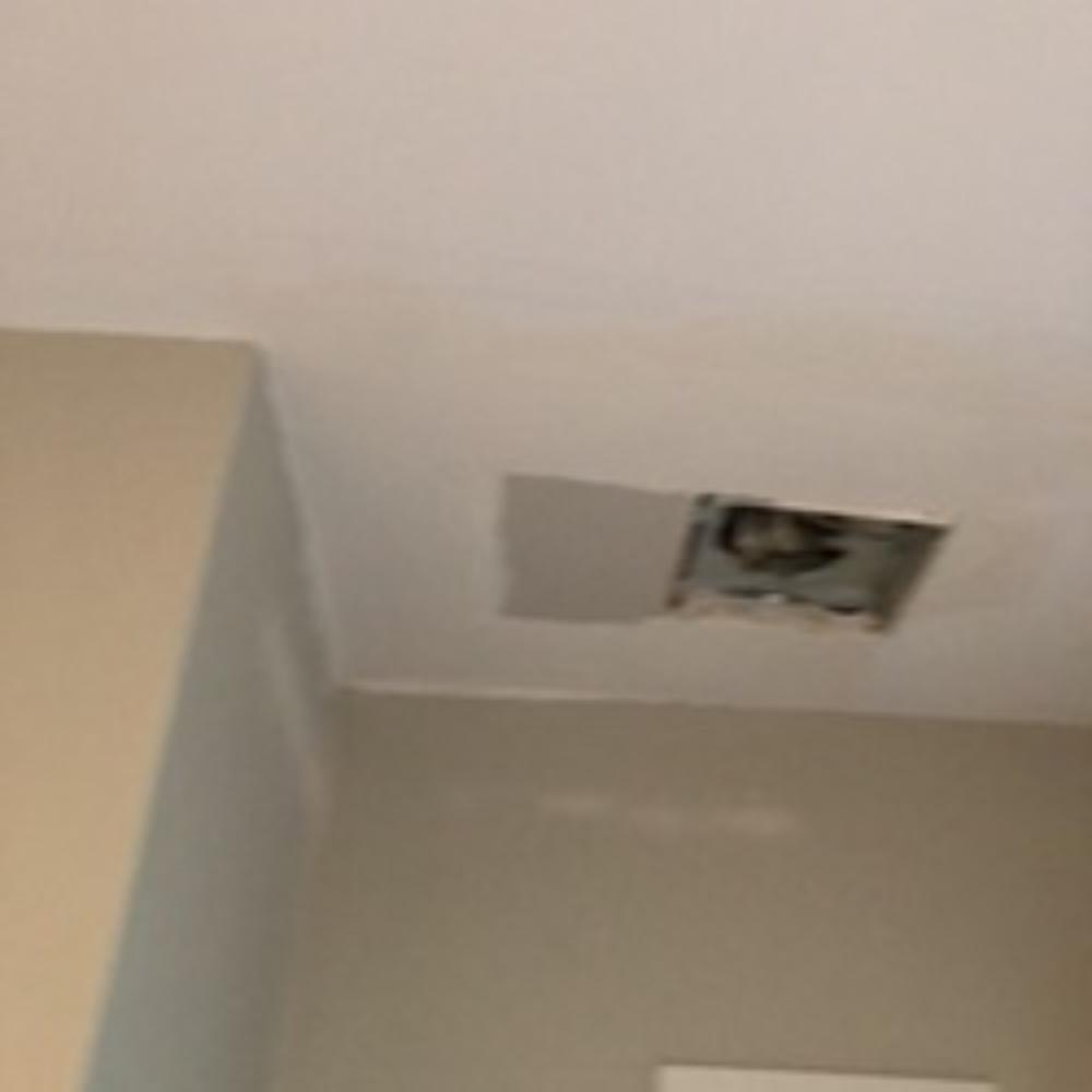 Ceiling Fan Repair ~ Baltimore, MD