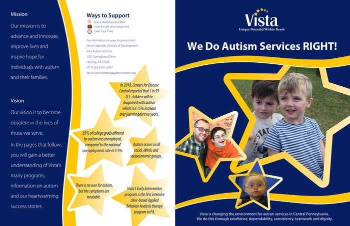 Vista Informational Brochure