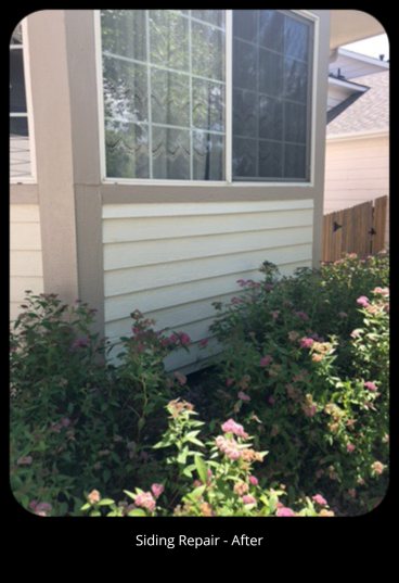 Siding Repair - After