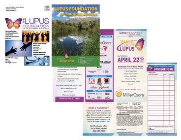 The Lupus Foundation