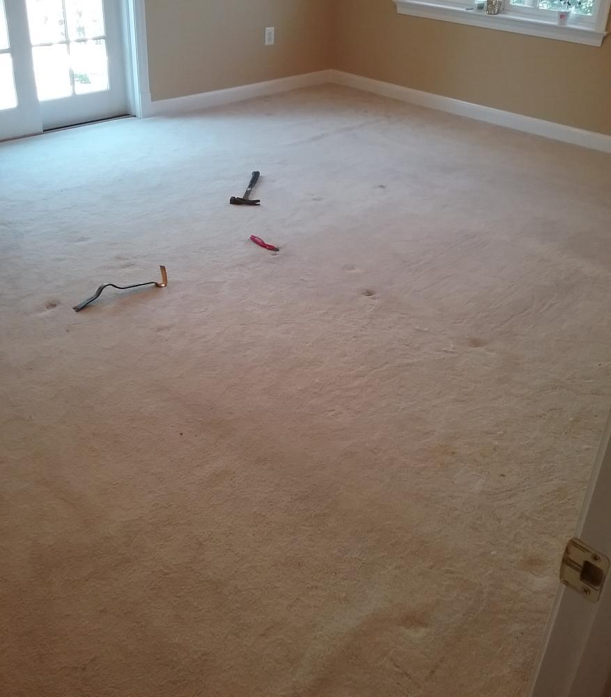 Vinyl wood floor install before