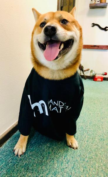 Pet Accessibility's
