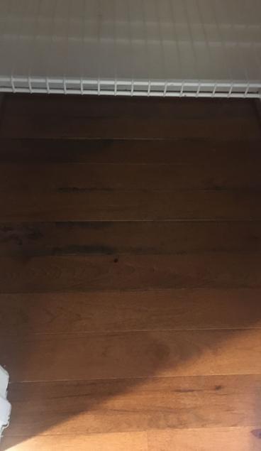 Wood Floor After