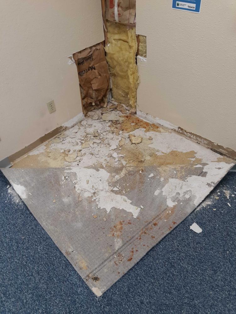 Drywall repair & Repaint job Before