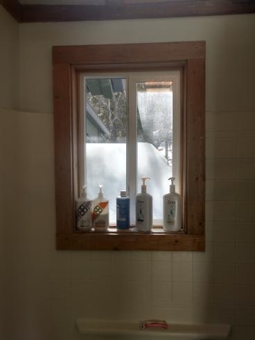 Shower Remodel - Lakewood, CO