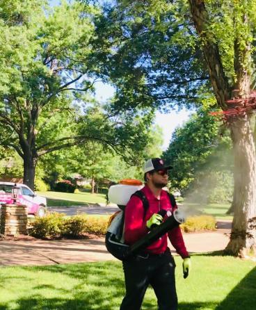 Technician Spraying