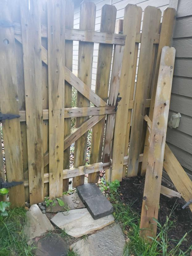 Does Your Fence Need Some TLC?
