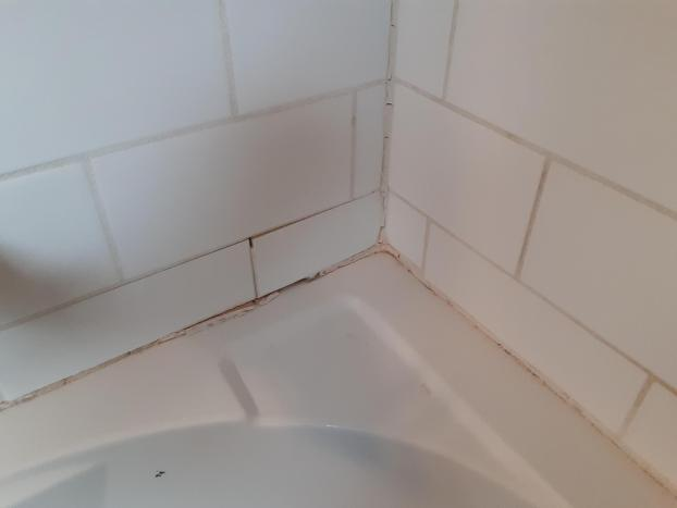 Tub and shower work in Pewaukee, Wisconsin. - Before Photo