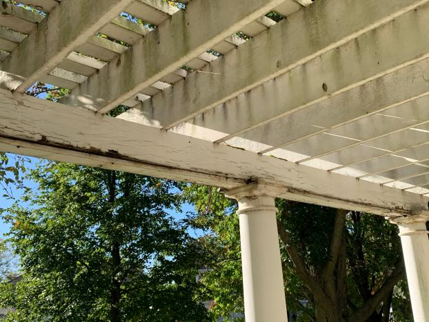 Pergola Project - Before Pictures