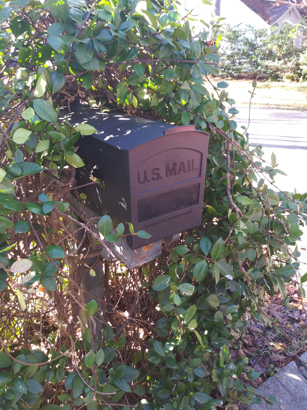 Mailbox Replacement in Tallahassee