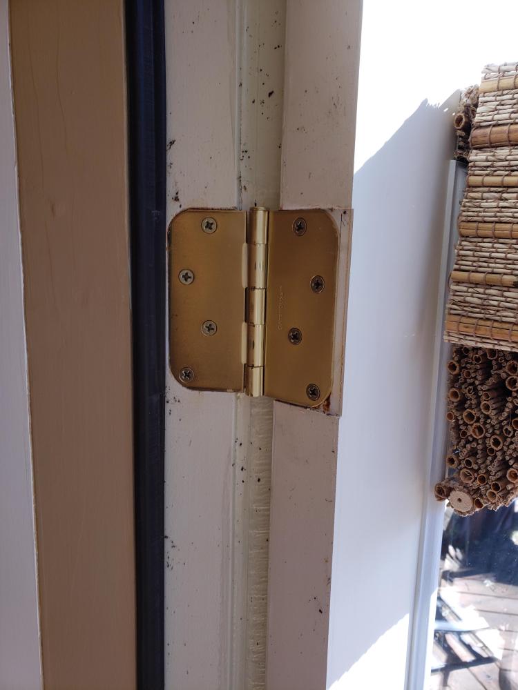 Door Hinge Replacement in Tallahassee
