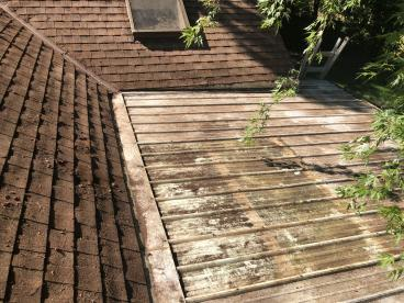 Debris removal - after