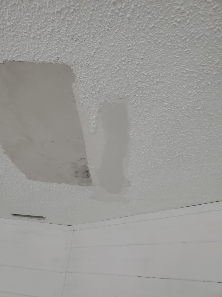 Ceiling Patch in Tallahassee