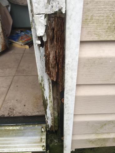 Door jamb repairs in Springdale