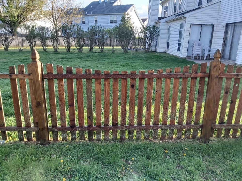 Fence Pressure Wash Dover