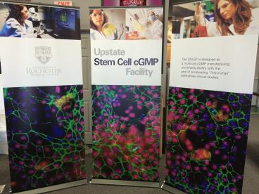 University of Rochester Medical Center banner stands!