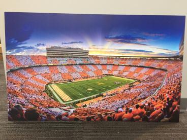Tennessee Vols Art Board Print
