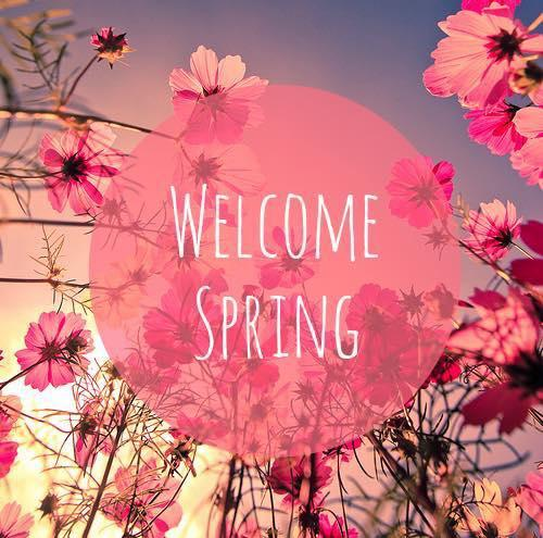 Welcome Spring from Hand & Stone - Clay Terrace, Carmel